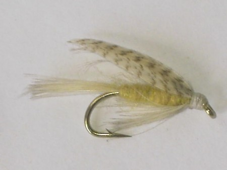 Light cahill wet fly