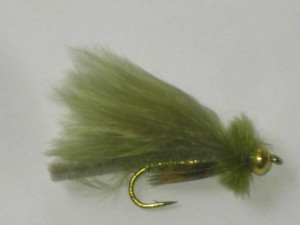 Tungsten fox poopah olive