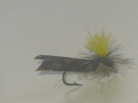 Hi vis caddis natural yellow wing