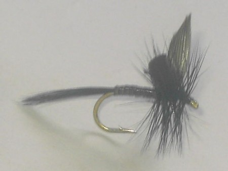 Quill black dry fly