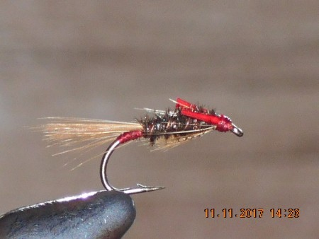 diawl bach fly peacock