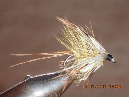 French partridge wet fly