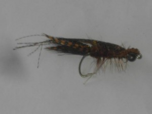 Crayfish rust