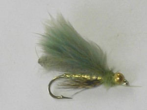 Tungsten poopah olive
