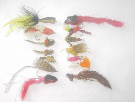 100 Assorted bass bug fly fishing flies