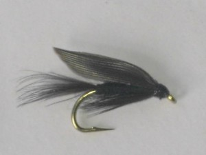 Black gnat wet fly