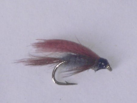 Dark cahill wet fly
