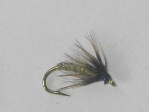 Green wells spider wet fly