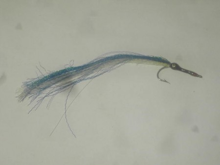 Needle fish blue white