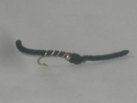 B.h san juan worm black