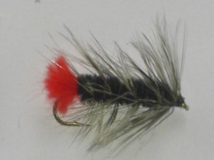 Woolley worm black