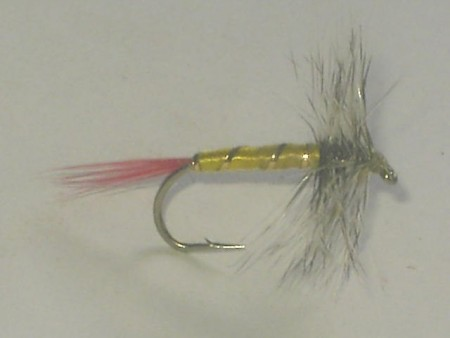 Gray hackle yellow dry fly
