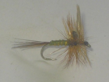 Green wells glory dry fly
