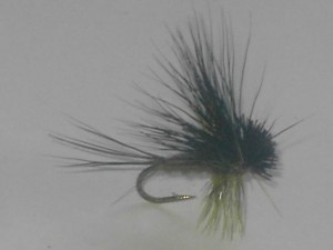 Hairwing dun olive