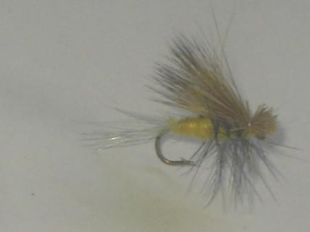 Hairwing dun trico