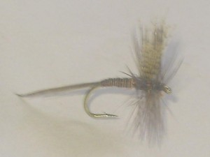 Quill red dry fly