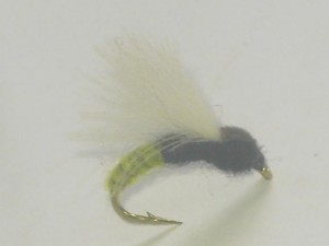 White winged cdc fly 2