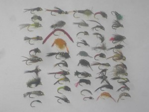 50 assorted nymph flies
