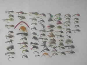 75 assorted nymph flies