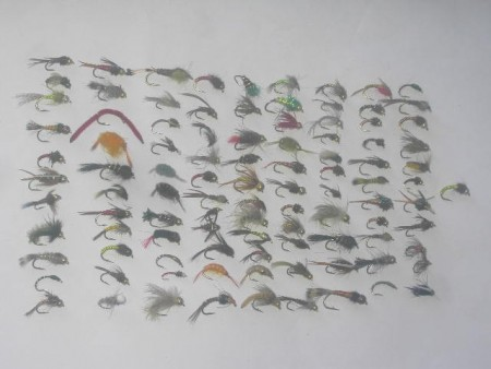 100 assorted nymph flies