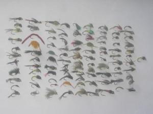 100 verschiedene Nymphe fliegen