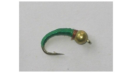 Tungsten green larva