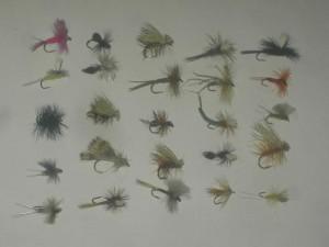 25 verschiedene Trockenfliegen
