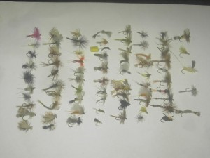 75 berbagai macam dry lalat