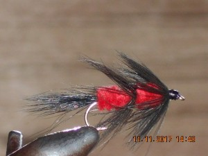 Fuzzy wuzzy red fly