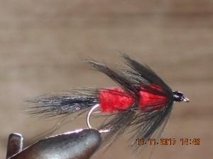 Fuzzy wuzzy red fly