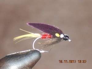 Watson fancy wet fly