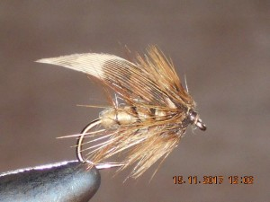 Concoction wet fly