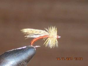 Midge fly 5
