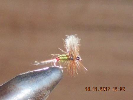Midge fly 3