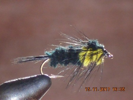 Montana nymph yellow