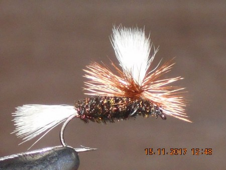 Parachute coachman dry fly