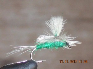 Splitwing green drake