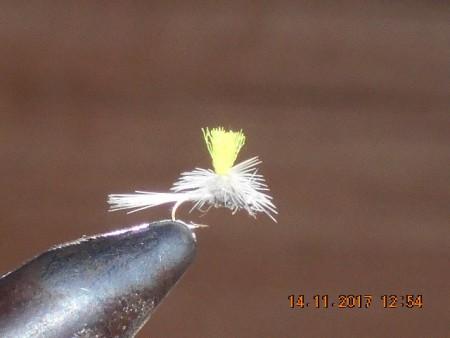 Parchute midge fly 1