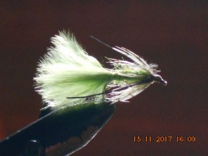 Partridge & green fly