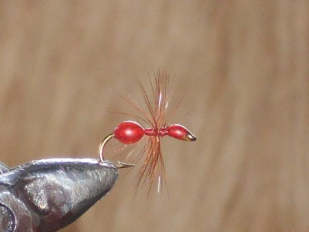 Epoxy red ant
