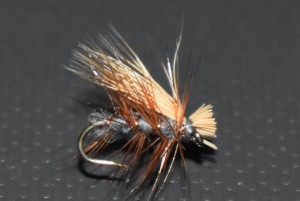 Elk hair caddis gray
