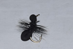 Foam ant black fly