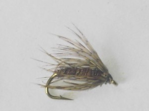 Pheasant tail soft hackle wet fly