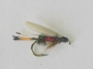 Royal coachman wet fly