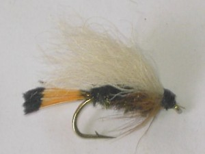 Western coachman wet fly