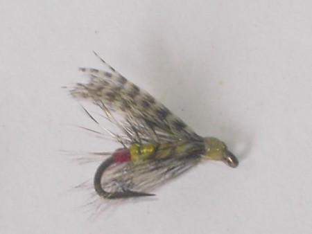 Yellow palmer wet fly