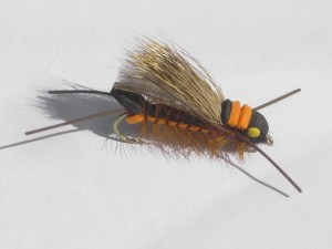 Salmon fly orange