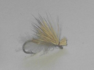 Cdc elk hair caddis tan
