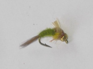 Tungsten olive emerger