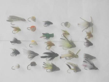 25 verschiedene durchorganisierter Fliegen Fischen